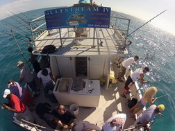Key West Party Boat Fishing