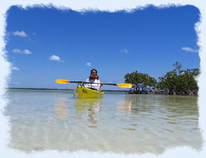 Lady Kayaking in a Florida Keys mangrove while on an Eco Tour.